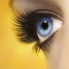 Beautiful woman eye close up with long lashes