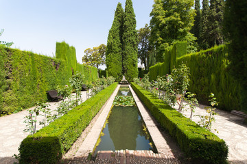 Gardens of the Generalife inside the Alhambra palace of Granada,