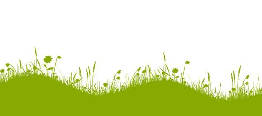 Grüne wellige Blumenwiese