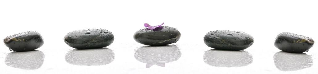 Obraz Petal on spa stone with water drops - fototapety do salonu