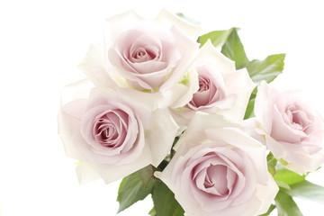 pastel purple rose bouquet for wedding background