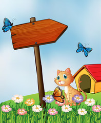 Keuken foto achterwand Katten A cat beside an arrow board