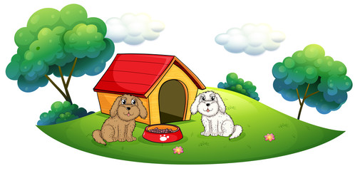 Tuinposter Honden An island with a doghouse and two puppies