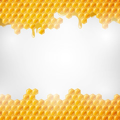 Vector Illustration of  Honeycombs