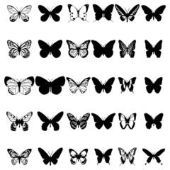 Schmetterling ~ Butterflies ~ Butterfly - Megaset