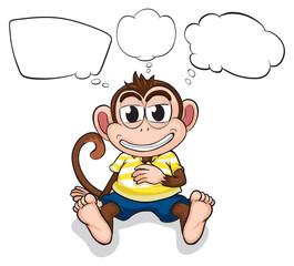 A worried monkey