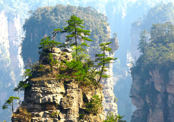 Photo sur Toile Chine Zhangjiajie National Park, China. Avatar mountains