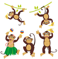 Set funny monkeys
