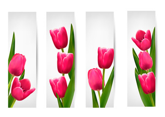 Set of banners with pink flower.Vector