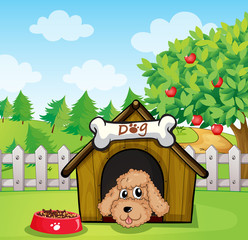 Garden Poster Dogs A puppy and his dog food