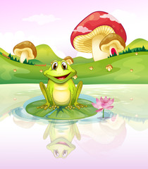 Canvas Prints Magic world A frog watching his reflection from the water