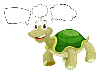 A thinking turtle