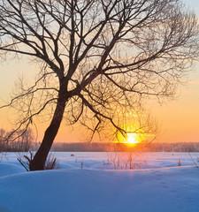 Fototapete - Sunrise