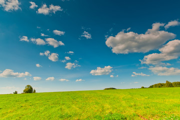 Beautiful view of green field and blue sky with clouds