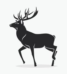 Isolated deer