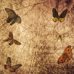 Foto auf AluDibond Schmetterlinge im Grunge butterfly wood grunge background