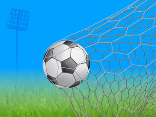 soccer ball in goal - vector illustration
