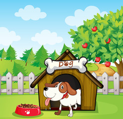 Poster de jardin Chiens A dog inside a doghouse with a dogfood