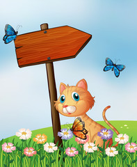 Deurstickers Katten An orange cat with a wooden arrow board