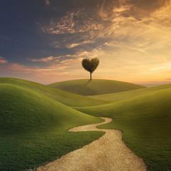 Tree heart on hill