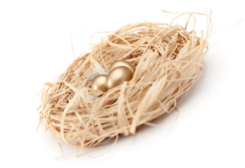 Nest with golden quail eggs, isolated on white