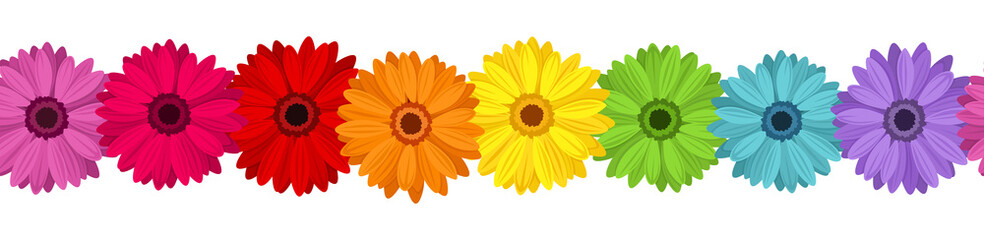 Horizontal seamless background with colored gerbera. Vector.