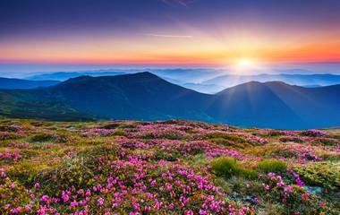 Fotobehang Nachtblauw mountains landscape