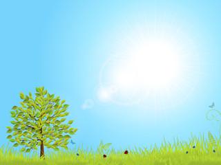 spring landscape with blue sky