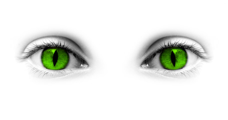 Yeux verts femme-chat, fond blanc