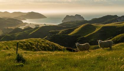 West coast hills