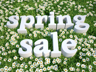 3d text Spring sale in floral meadow