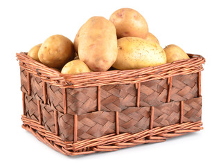 Potatoes in basket isolated on white