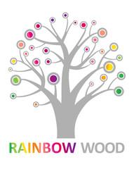 Rainbow wood.
