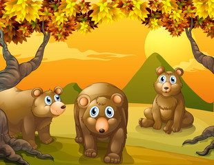 Wall Murals Bears Three brown bears