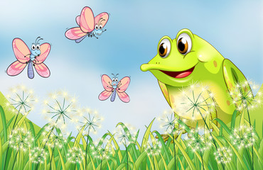 A frog with three butterflies