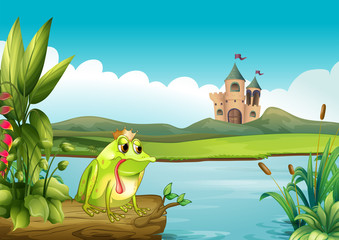 A frog above a floating trunk across the castle