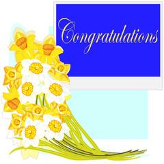 Congratulations. Narcissuses