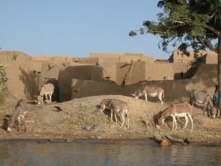 village rives du Niger