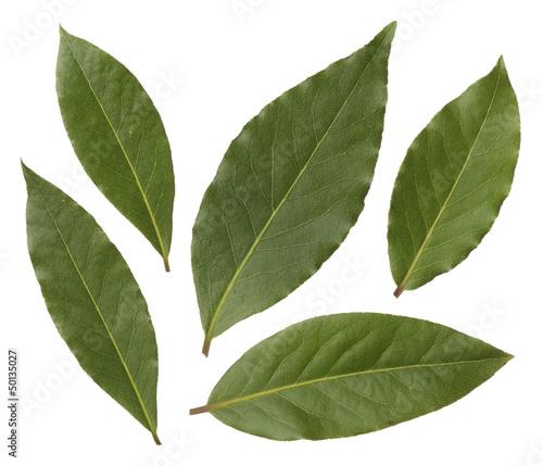 Лавровый лист лавровая вишня
