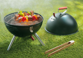 Barbecue cookout with delicious kebabs