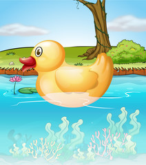 Wall Murals River, lake The yellow toy duck in the pond