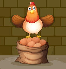 A chicken above a sack full of eggs