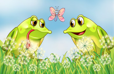 The two frogs and the butterfly
