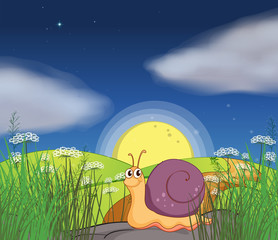 A snail at the hills in the middle of the night