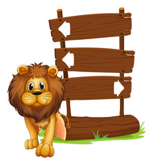 A lion beside the wooden arrowboards