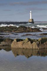 Fototapete - Aberdeen harbour Head Photo