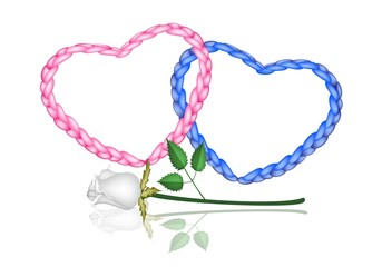 Two Rope Heart with A White Rose