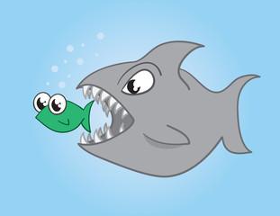 Fish eating a larger fish