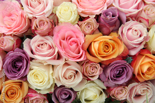 Mixed pastel roses