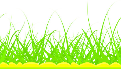 green grass on a white background